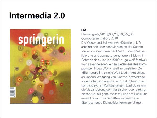 2010_springerin_01